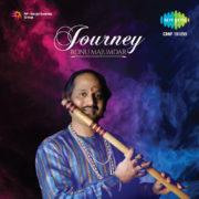Ronu Majumdar Journey